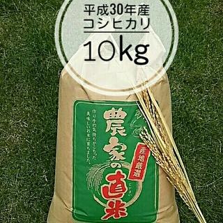 新米コシヒカリ玄米 10㎏今ならみかん🍊3個付き