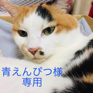 ウェン(WEN)の【ウェン・クレンジングコンディショナー】(シャンプー)