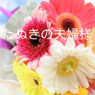 ミキモト(MIKIMOTO)のたぬきの夫婦様 専用(リング(指輪))
