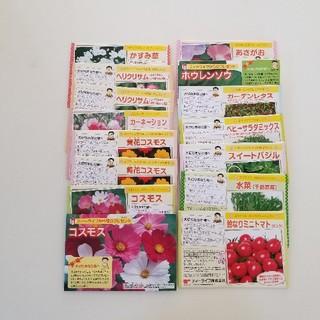 クーポン使用で285円 色々野菜&花の種 詰め合わせセット(プランター)