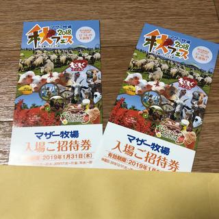 マザー牧場 入場券 2枚(遊園地/テーマパーク)