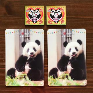 上野動物園 パンダ シャンシャン バースデーカード(印刷物)