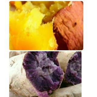 1キロ無農薬 紫芋