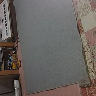 3畳用★電気カーペットホットカーペット(ホットカーペット)