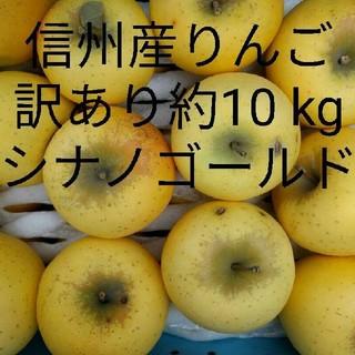 千曲農園 訳ありシナノゴールド 約10kg 信州産リンゴ(フルーツ)