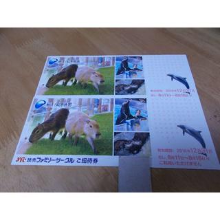 新江ノ島水族館 招待券2枚(水族館)