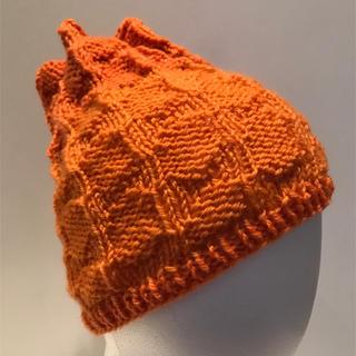 手編み帽子(大人用)(帽子)