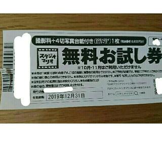 キタムラ(Kitamura)のスタジオマリオ 無料お試し券(ショッピング)