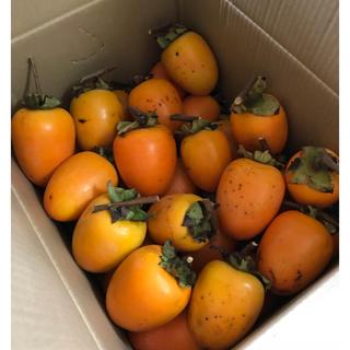 渋柿 干し柿 箱込み5キロ(フルーツ)