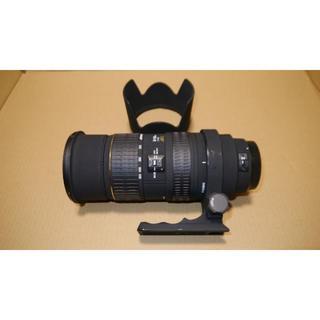 シグマ(SIGMA)のSIGMA APO 50-500mm F4-6.3 EX DG HSM(レンズ(ズーム))