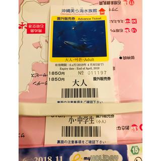 美ら海水族館 チケ(水族館)