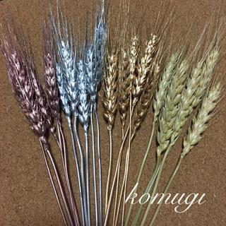 大地農園 小麦 ゴールド シルバー ローズゴールド(ドライフラワー)