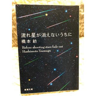 流れ星が消えないうちに(文学/小説)