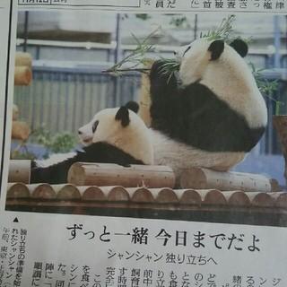 読売新聞夕刊 シャンシャン 他(印刷物)