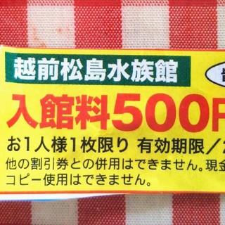 越前松島水族館割引券2枚セット★激安★(水族館)