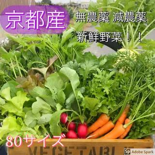 新鮮無農薬野菜 減農薬野菜!京野菜詰め合わせ