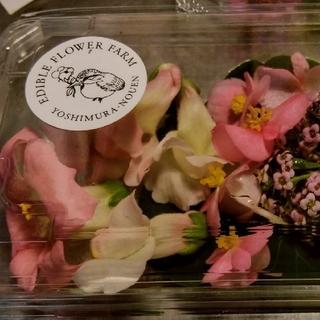 エディブルフラワー薄いピンク20輪(野菜)