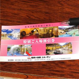 箱根ユネッサン特別割引券(プール)