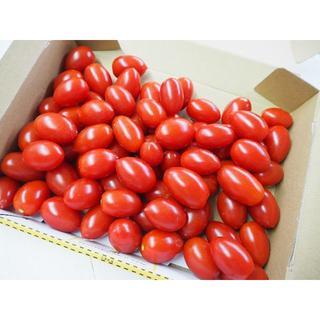 ②ミニトマト 「アイコ」 熊本産 1k コンパクト便