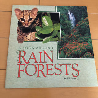 A LOOK AROUND RAIN FOREST(洋書)