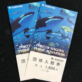 2枚/名古屋港水族館  おとな用 チケット(水族館)