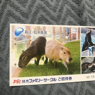 江ノ島水族館 チケット 2枚セット(水族館)