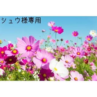 ニホンイクジ(日本育児)の日本育児 ベビーサークル クラウド柄 グレー×ホワイト 収納袋付(ベビーサークル)