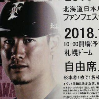 ☆日本ハムファイターズ  ファンフェス 11/24(土) 自由席(その他)