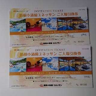 箱根ユネッサン入場券2枚(プール)