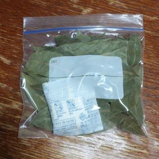 ローリエ 月桂樹 無農薬 55枚前後(調味料)