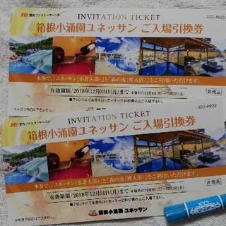 箱根小涌園ユネッサンチケット~12/31 入場券2枚セット(遊園地/テーマパーク)