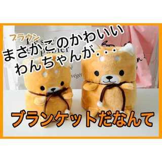毛布 膝掛け ペット毛布 ブラウン【新品】(毛布)