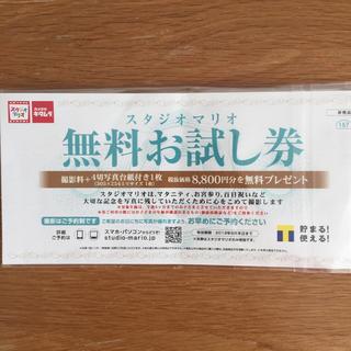 キタムラ(Kitamura)のスタジオマリオ無料お試し券☆(その他)
