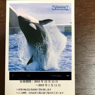鴨川シーワールド 大人子供共通入場券1枚(水族館)