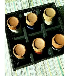 陶器グラス 6個セット (グラス/カップ)