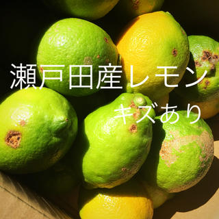 瀬戸田グリーンレモン キズあり(フルーツ)