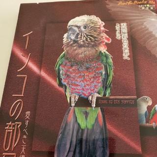 インコの部屋本(鳥)
