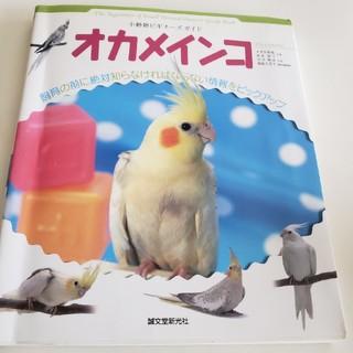 オカメインコの本(鳥)