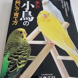 楽しい小鳥の本(鳥)