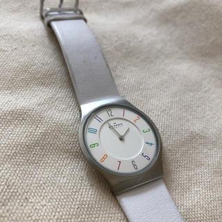 スカーゲン(SKAGEN)のSKAGEN tictac マルチカラー 別注 腕時計(腕時計)