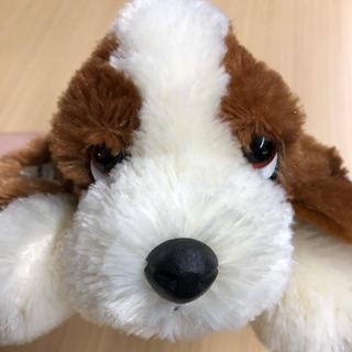 ハッシュパピー(Hush Puppies)のハッシュパピー  ぬいぐるみ(ぬいぐるみ)