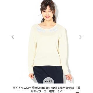 エニィスィス(anySiS)のanysis 新品フラワー刺繍ニット(ニット/セーター)