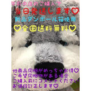 コストコ(コストコ)の♡コストコ♡アニマルチャムズ♡シュナウザー(ぬいぐるみ)