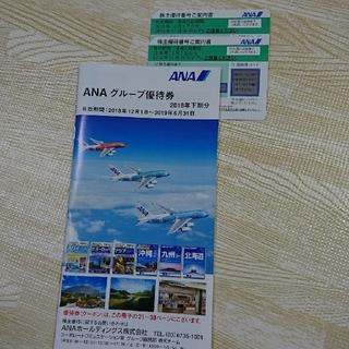 エーエヌエー(ゼンニッポンクウユ)(ANA(全日本空輸))のANA 株主優待券 2枚セット 全日空(航空券)