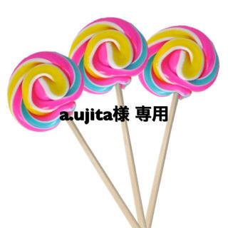 a.ujita様 専用(その他)