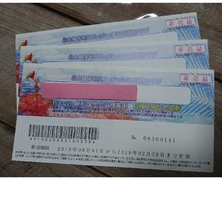 ハワイアンズ  入場券  3枚セット(プール)