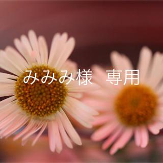 みみみ様 専用(その他)
