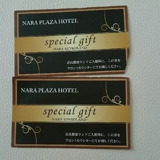 奈良健康ランド チケット(その他)