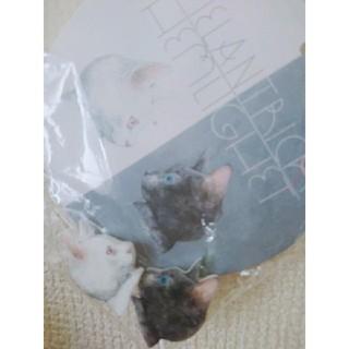 アチャチュムムチャチャ(AHCAHCUM.muchacha)の【新品未使用】ヒグチユウコ 黒猫白猫 イヤリング(イヤリング)