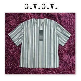 ジーヴィジーヴィ(G.V.G.V.)の新品 g.v.g.v Vネック ストライプ 半袖 カットソー ブラウス(シャツ/ブラウス(半袖/袖なし))